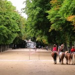 paseos-en-pony-paris